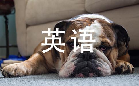 问物体数量的英语句子有多少?